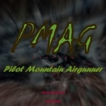 Group logo of Pilot Mountain Airgunner
